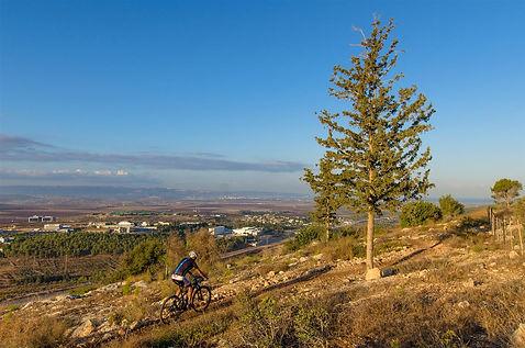 """רוכבים ביער אחיהוד - התמונה מאתר קק""""ל"""