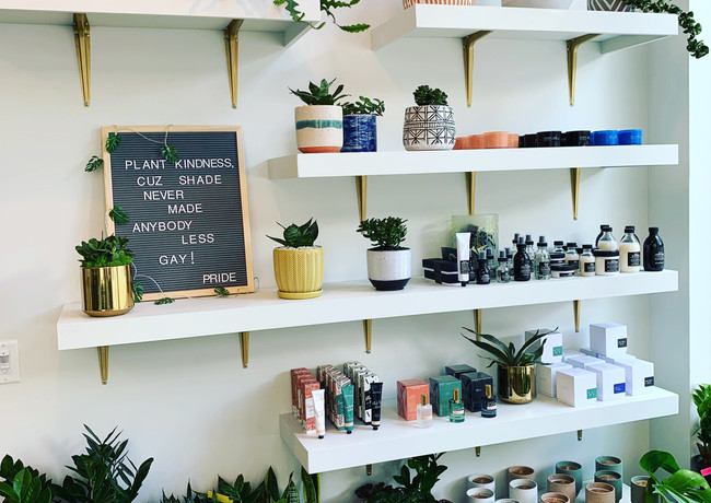 Paddy Wax Candles & Potted Plants