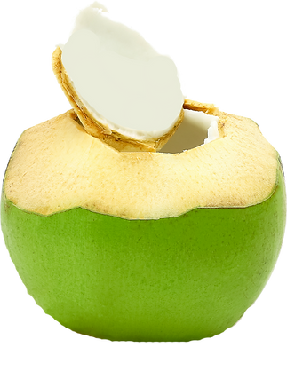 COCO PNG BUENA.png