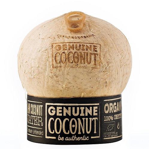 Noix de coco fraîche bio