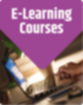 ElearningCoursesPanel.png