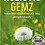 Thumbnail: Holistic Gemz: How to Treat Seasonal and Year-long Allergies Naturally