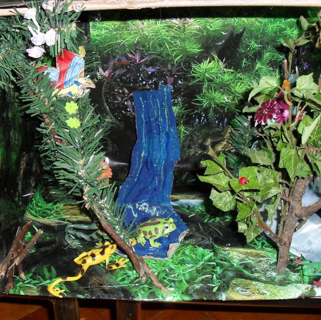 rainforest shoeboxes 041.jpg