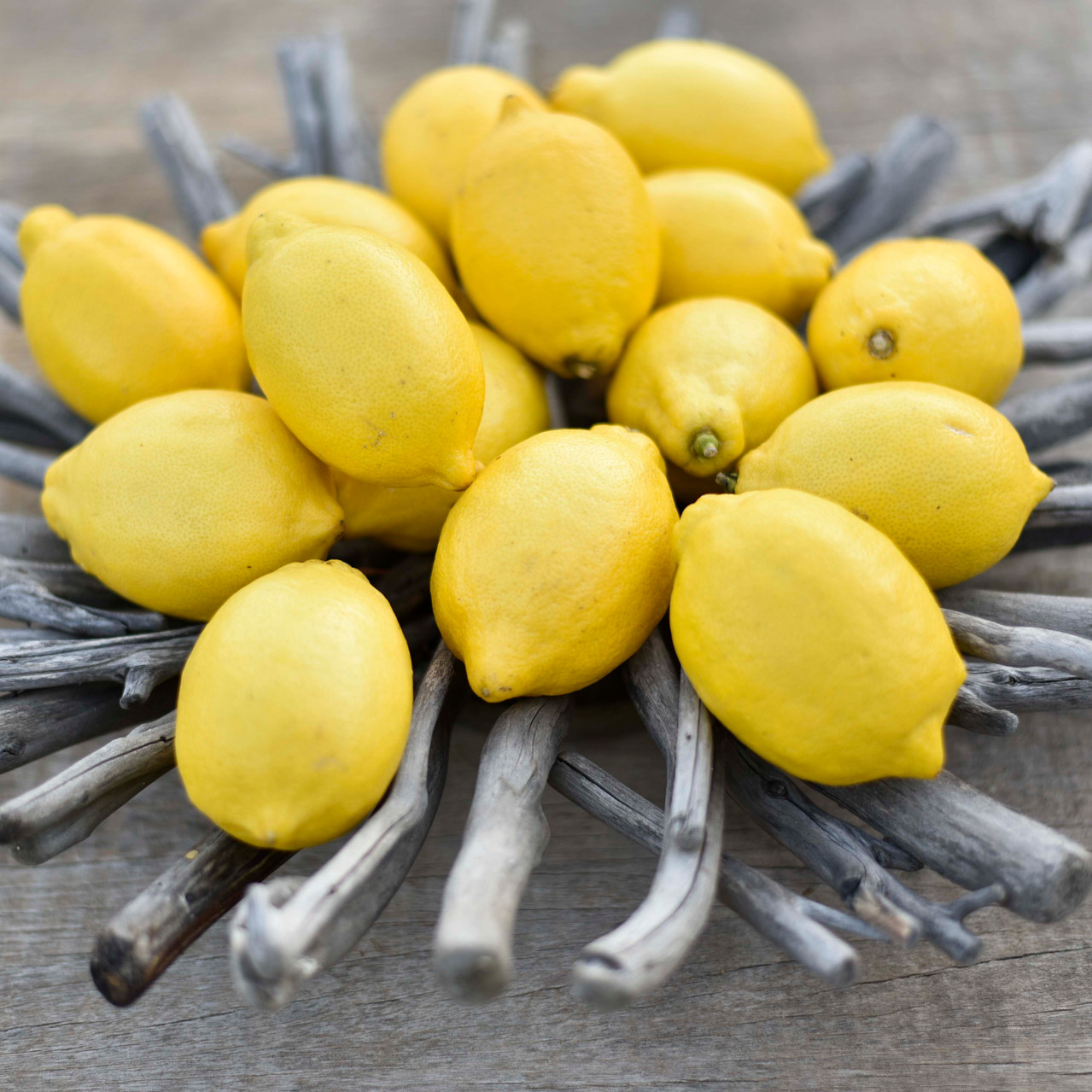 Imagesdesaveurs - limoni