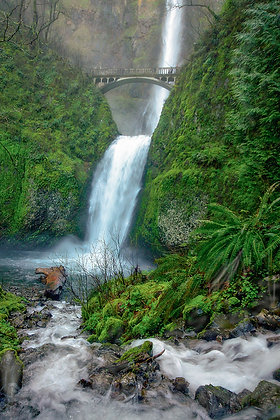 Oregon - Columbia river gorge Waterfalls and Wildflowers.  April 29th-30th. $350