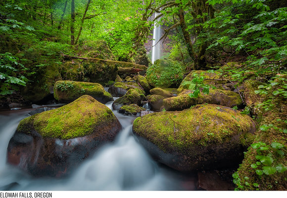 Elowah Falls, Oregon 36x54
