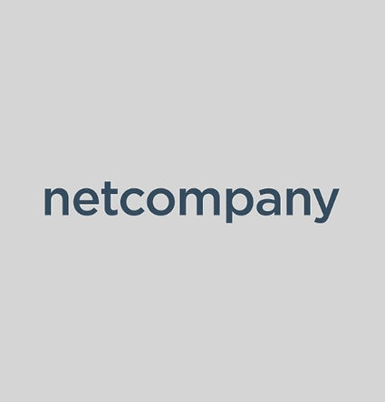 Netcompany%202_edited.jpg
