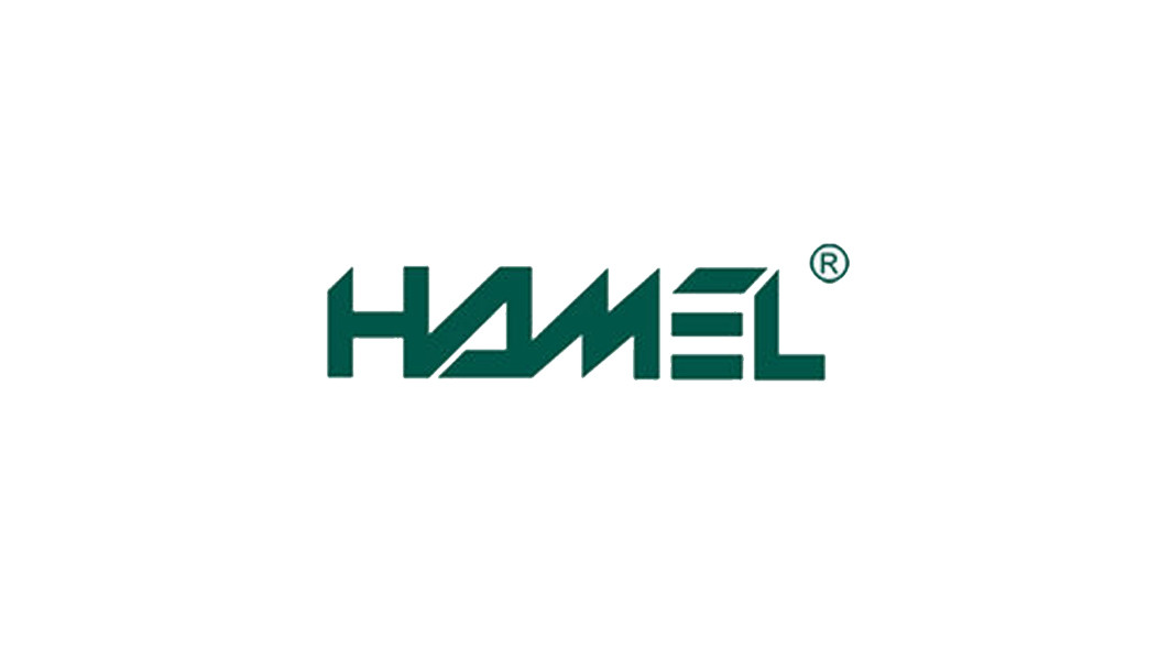 hame-france website.jpg
