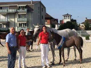 Erfolgreiche Fohlen an der Fohlenschau Horn vom 26.08.2017!!!