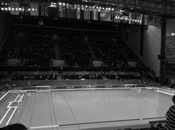 London Olympic Park Water Polo