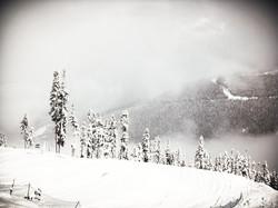 Whistler Alpine World Cup