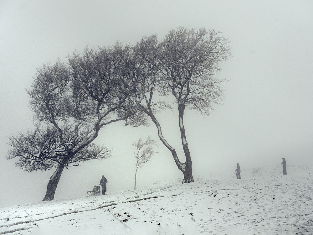 Winter snow and the Three Sisters. a well known landmark of Cleeve Common, the Cotswolds