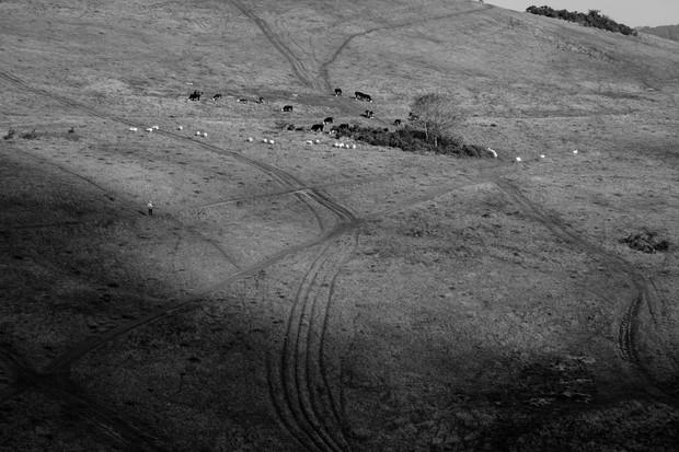 Hillside Facing Disused Quarry