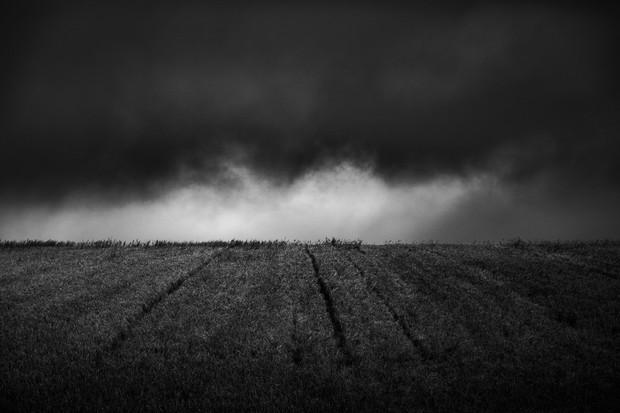 Cotswold Fields