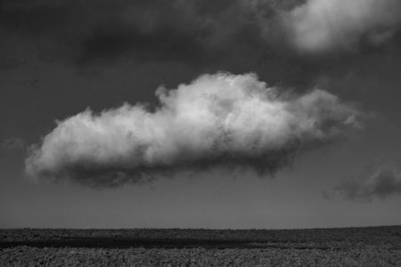 Lone Cloud. Cleeve Common