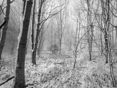 Winter Hike to Cleeve Common