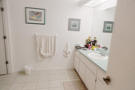 Bathroom. florida Rental