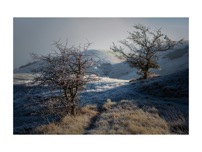 Winter Photographs of Cleeve Hill and Common