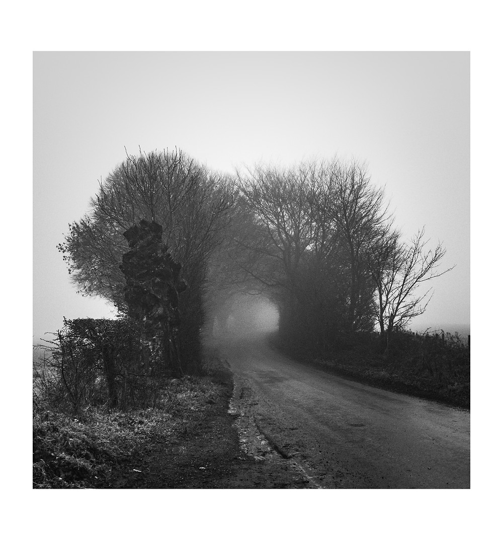 Black and White landscape of a foggy country lane in the Cotswolds