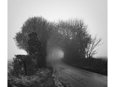 Second Fog Photo