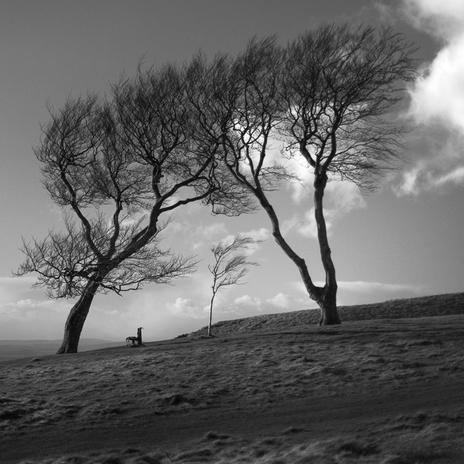 Three Sisters, Cleeve Common