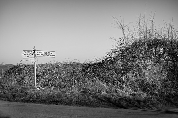 Cotswold Country Lane