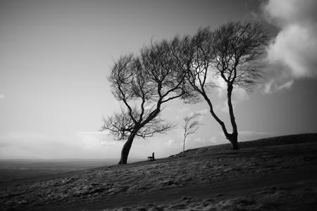 Viewpoint. Cleeve Common