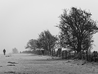 Heavy Frost on Cleeve Common