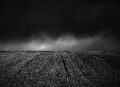 Black and White Landscape Photographs of the Cotswolds