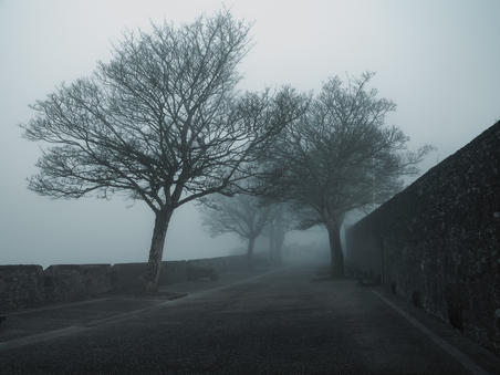 Morning Mist. The Grand Parade. Derry City Wall
