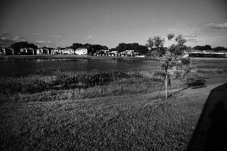 Lake. Residential Estate. Florida