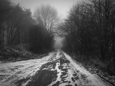 Out and About - Snow and Mist