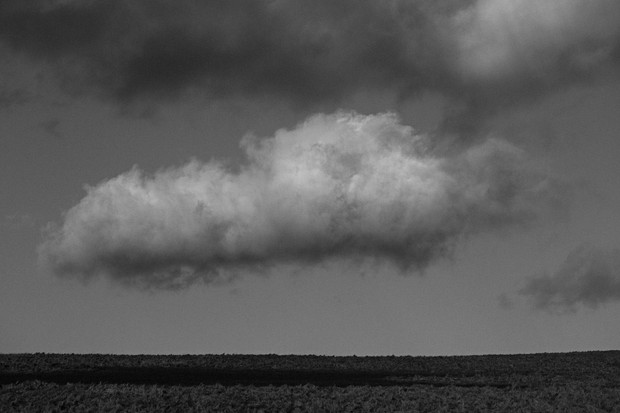 Low Level Cloud
