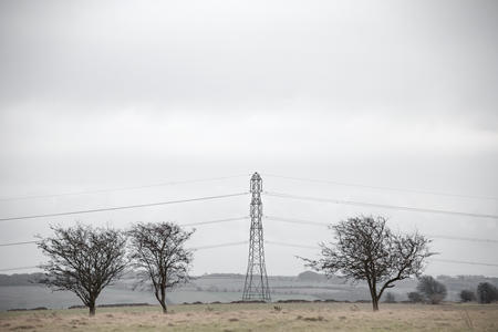 Hawthorn Trees and Pylon. Cleeve Common