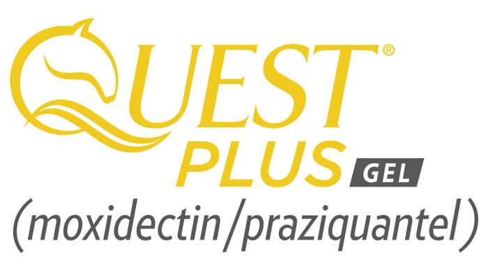 quest-plus-moxidectin-praziquantel-gel-v