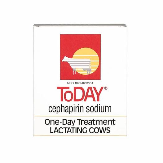 today-mastitis-treatment-for-lactating-c