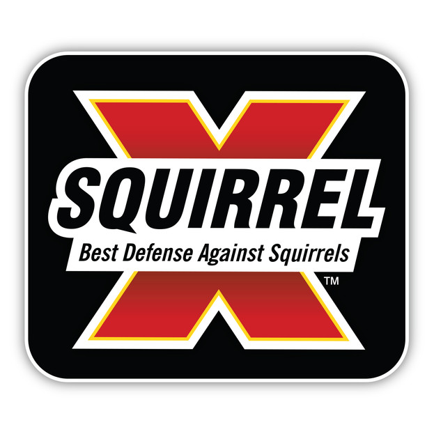 Hi-Res-Squirrel-X_Logo.jpg