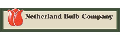 netherland-bulb-company-86066776.jpg