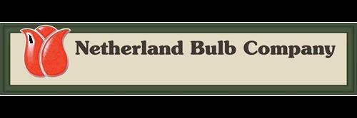 netherland-bulb-company-86066776_edited.