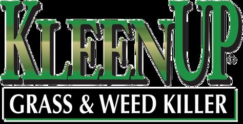 Kleenup_logo.png