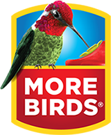 more-birds-logo-edit2.png