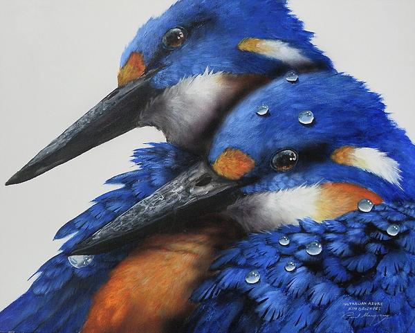 Azure Kingfishers.jpg