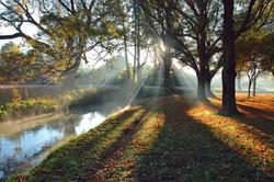 Heathcote Rays.jpg