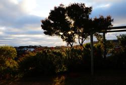 Mt Pleasant Sunrise.jpg