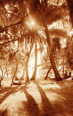 maldives sunrise.jpg