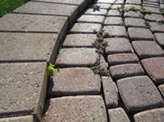 Brickpaver Repair
