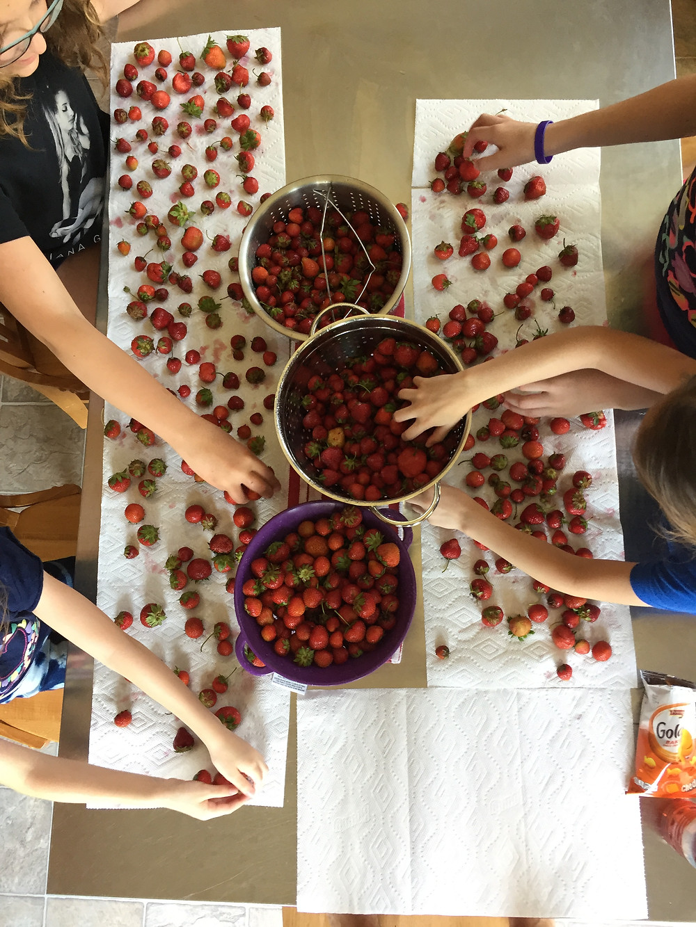 Sorting the strawberries!