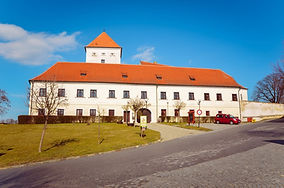 Zámek_čejkovice_2.jpg