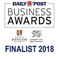 Daily Post Business Awards 2018 FINALIST