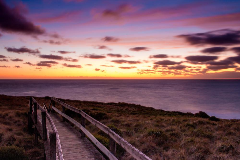Wildlife-Inspired Wedding destination in Phillip Island